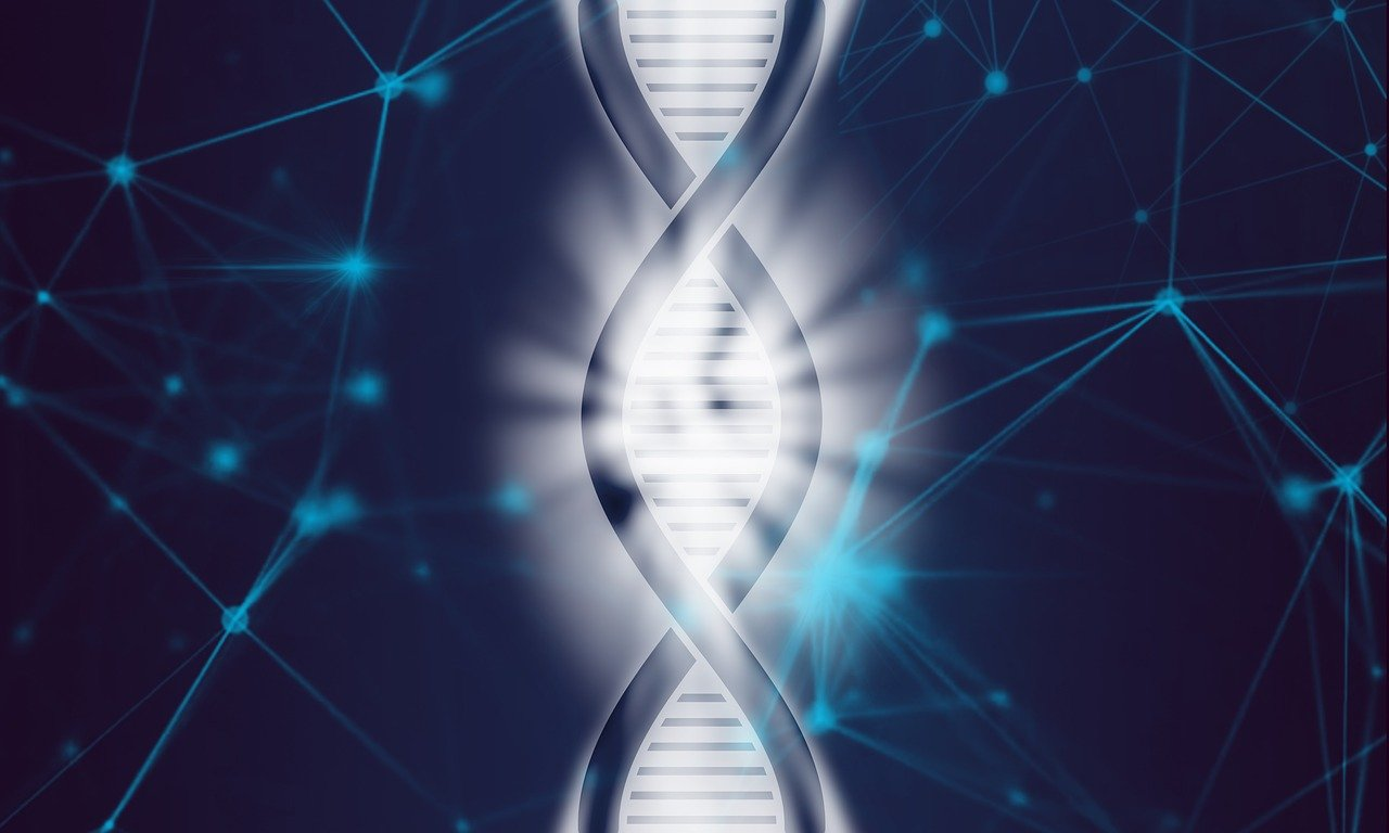 Who figured out the structure of DNA?